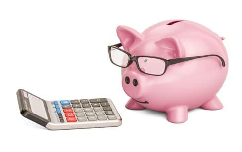 pig and calculator
